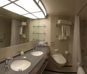 Nieuw Amsterdam - SS 6068 - Bathroom